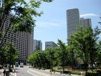 武蔵小杉の魅力と地域情報