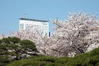小田急センチュリーサザンタワーホテルで就活エステとアロマテラピー